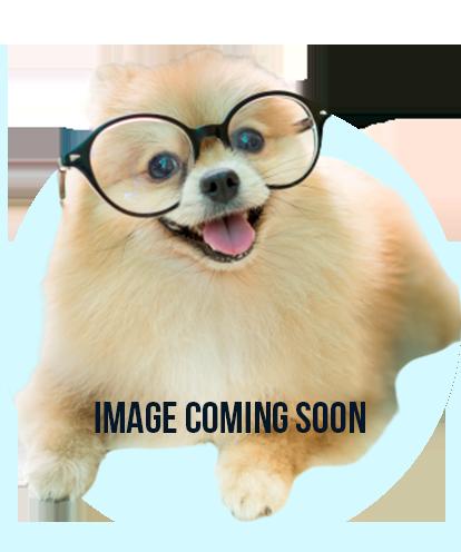 Image Coming Soon!